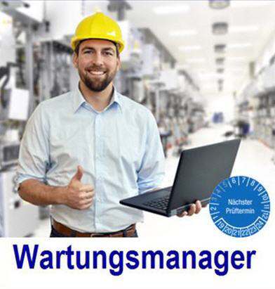 Auditor Software Wartung, Inspektion Instandsetzung